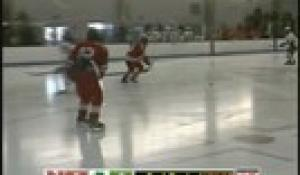 Hockey: North at Feehan (12/30/14)